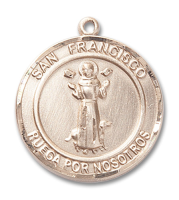 14kt Gold Filled San Francis of Assisi Pendant Stainless Gold Heavy Curb Chain